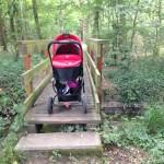 Steg im Wald bei Harthausen